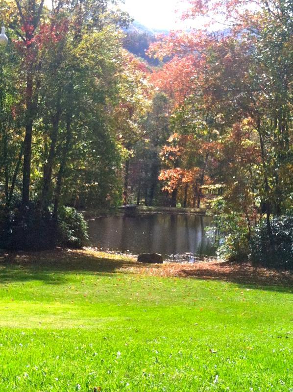 The pond in autumn - each season brings unique Smokey Mountain pleasures & views