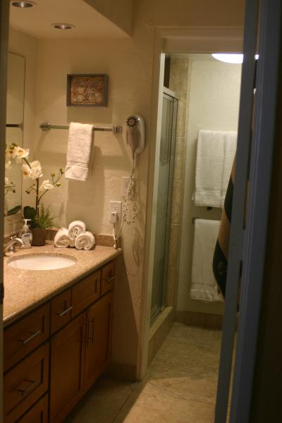 Granite counters and decorator touches in bathroom with separate dressing area.  Built in hairdryer