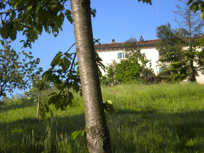 La Casa di Cuccaro, holiday rental in Province of Alessandria