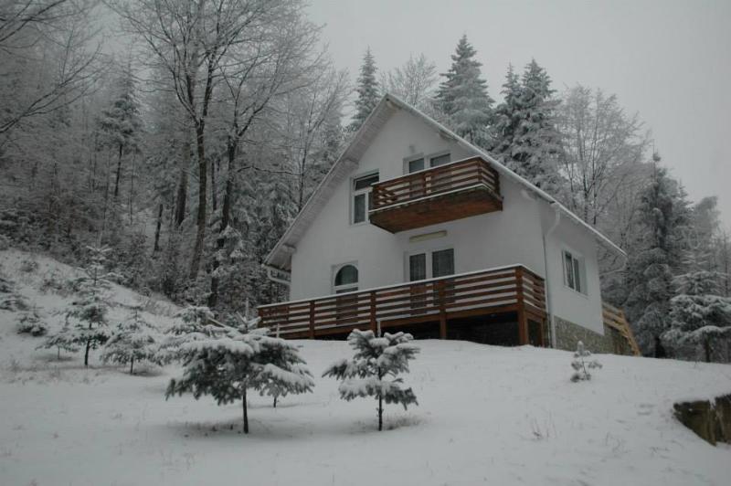 Vila Cristal 2, location de vacances à Nord-est de la Roumanie