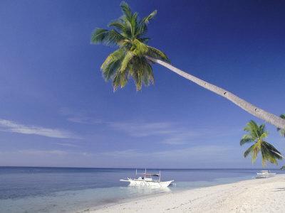 Un vero e proprio paradiso tropicale - Si tratta di Bikini Beach a soli 10 minuti, senza resort c'è (ancora)!