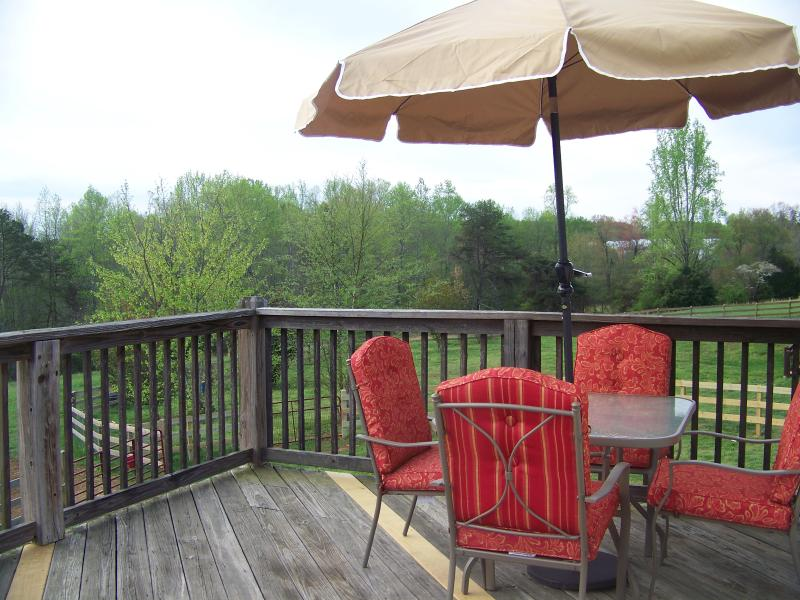 Only 12 Mins from Tryon International Eq Ctr, vacation rental in Tryon