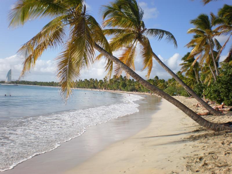 Studio Les pieds dans l'eau Martinique, holiday rental in Sainte-Anne