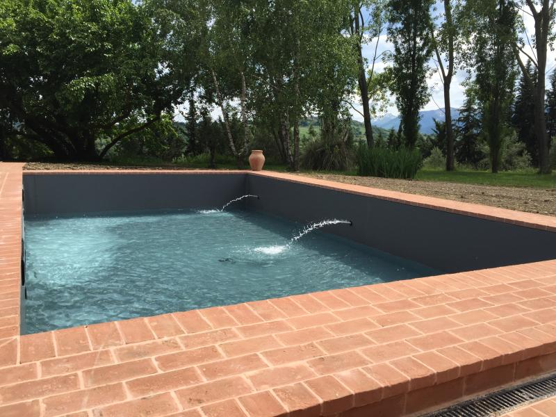 salt water pool installed Spring 2016
