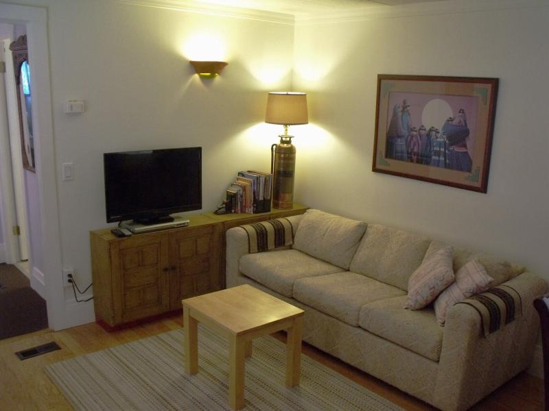 Flat screen TV, WiFi and a Full Size sofa sleeper bring the accommodations up to four guest.