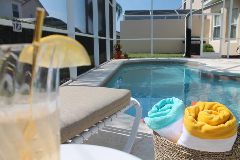 Lounge by the pool with a book and a nice drink. Pool heat can be added. Towels are supplied!