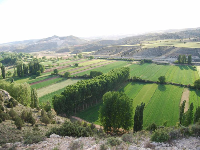 View of the valley of the river Alfambra. Cuevas Labradas.