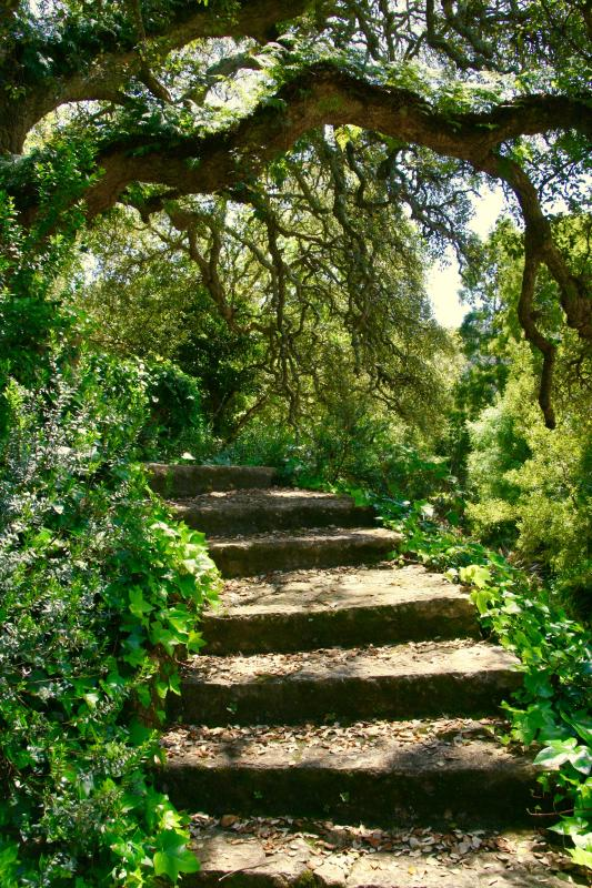 Magical path to your cottage (there is also an easy second entrance with no stairs)