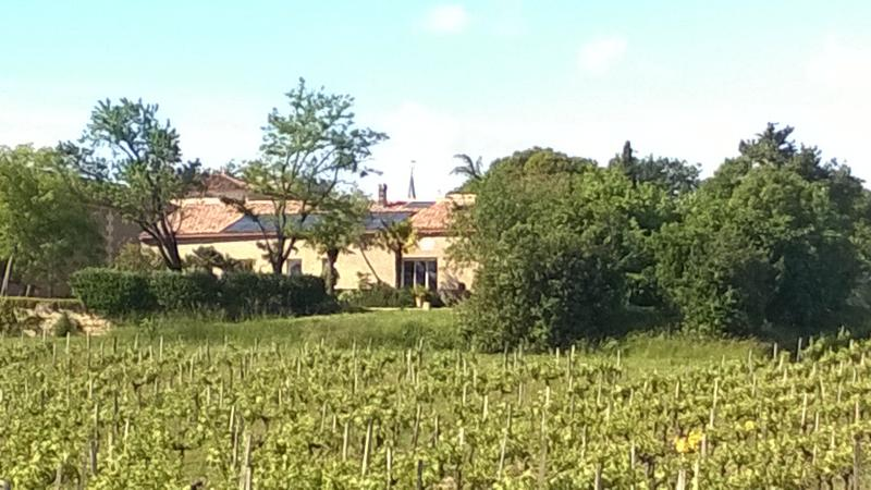 Pey'Cottage, sunny villa in the vineyard, holiday rental in Cartelegue
