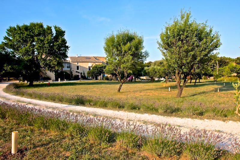 ECOGÎTE MAS DRAIOU Badafo - Lavandes, location de vacances à Drôme