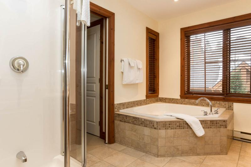 Master bathroom with jacuzzi bath and shower