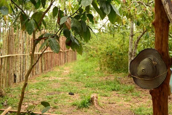 10k hammocks in rural area, vacation rental in Leticia