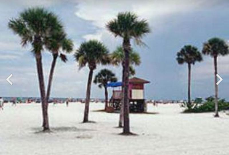 gulf beach pool and walk to siesta key village updated 2019 rh tripadvisor com