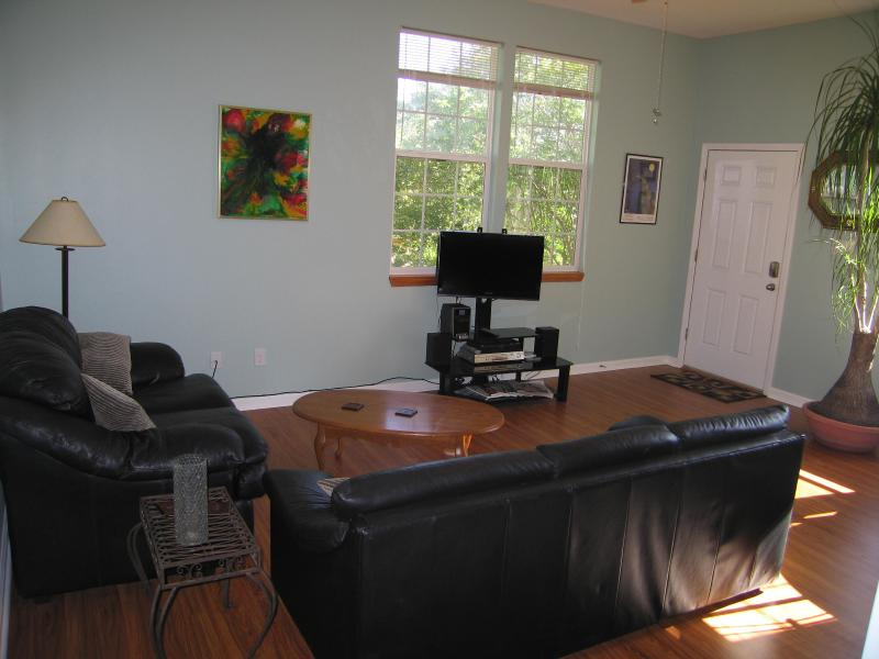 Comfortable living room with TV, cable, wi-fi, DVD player and MP3 stereo