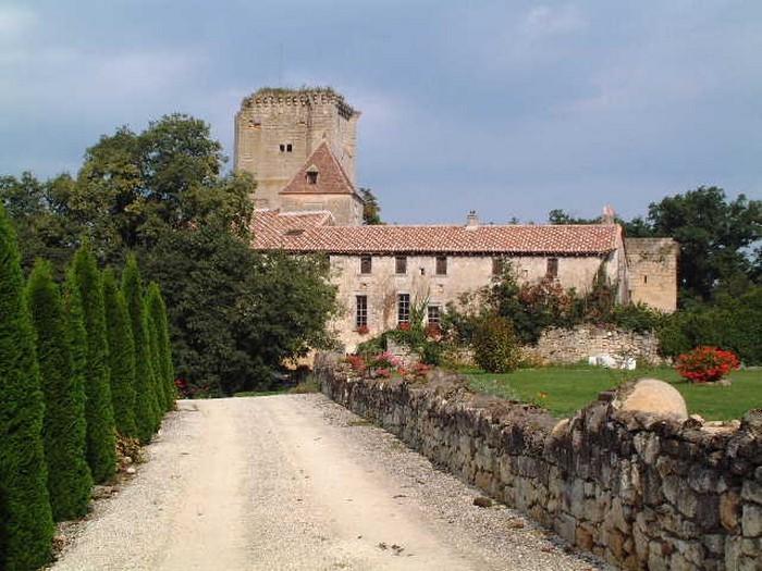 Appartement dans château Féodal a Saint Emilion, holiday rental in Cessac