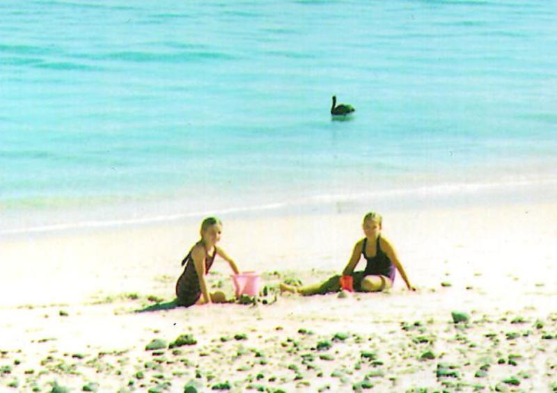 playas de arena de coral de Cabo Pulmo.