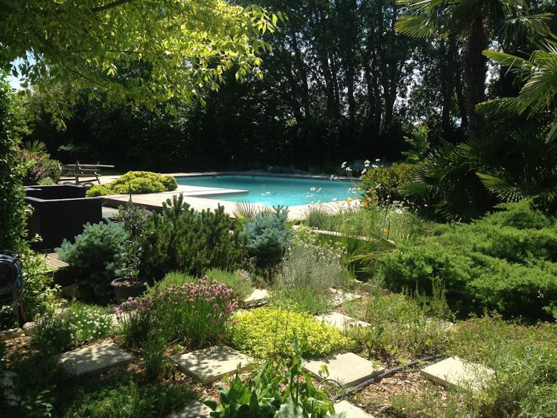 Jardin aromatique d'herbes de provence, nombreuses variétés  de thyms, ciboulette, romarin, menthe..