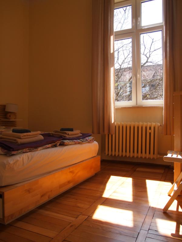 Yes, it is the bright and sunny apartment