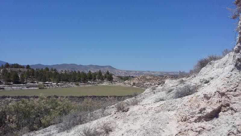 path in direction to Baza