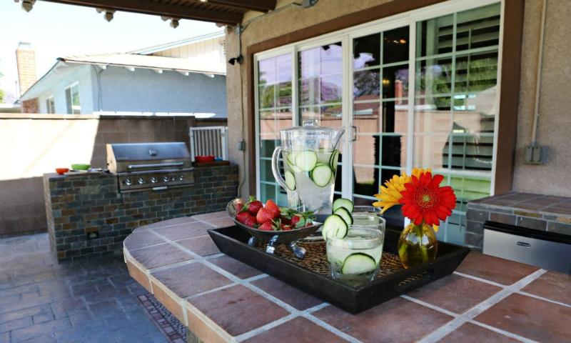 Outdoor Natural Gas Grill  and Refridgerator