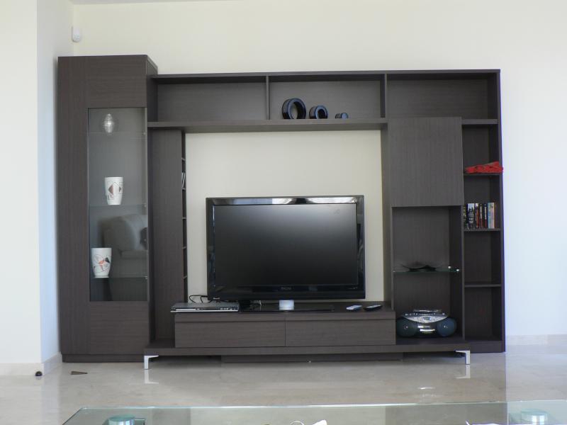 Plasma screen TV