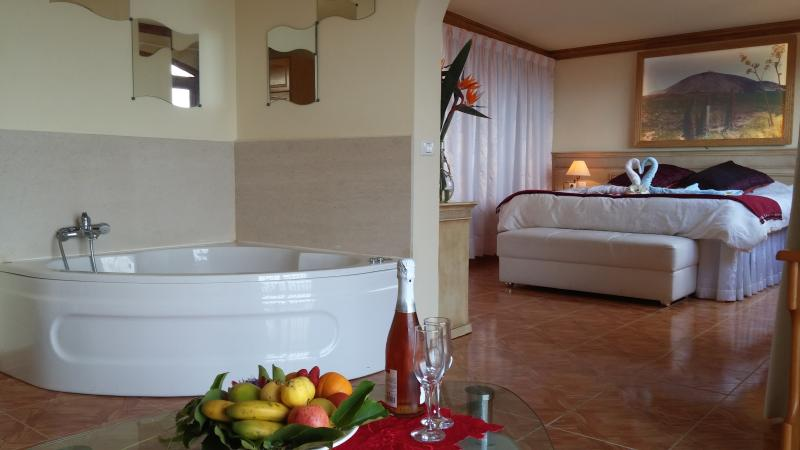 Suite con jacuzzy privado para 2  y vistas al mar, holiday rental in Icod de los Vinos