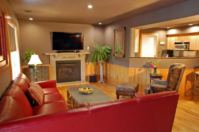 The main living room / kitchen with fireplace & 55' 4K HDTV.