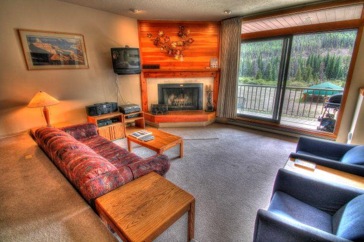 Living Area - The living area for this property is much larger than most 1 bedroom condos and has a nice wood fireplace with free wood carried to your condo.