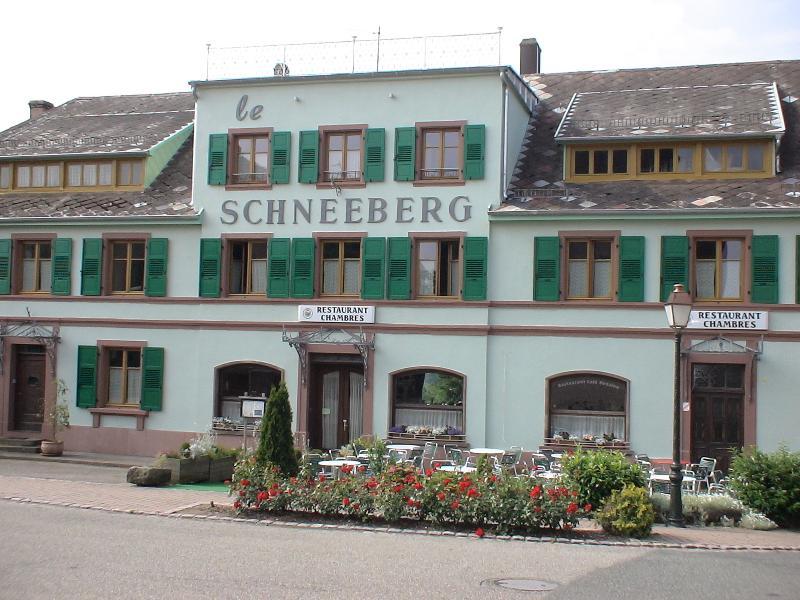 Hotel XIXème, Le Schneeberg, holiday rental in Oberhaslach