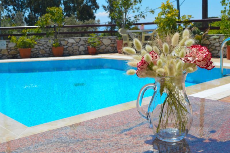 Villa Maraki, Agia Paraskeui(Platanias ) ,Skiathos, holiday rental in Kanapitsa