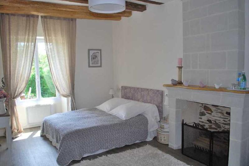 Chambre Loire : Un lit double -bureau - télévision - dressing - salle de bain - wifi gratuit