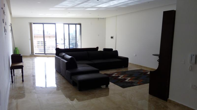 living room with a sheslong sofa