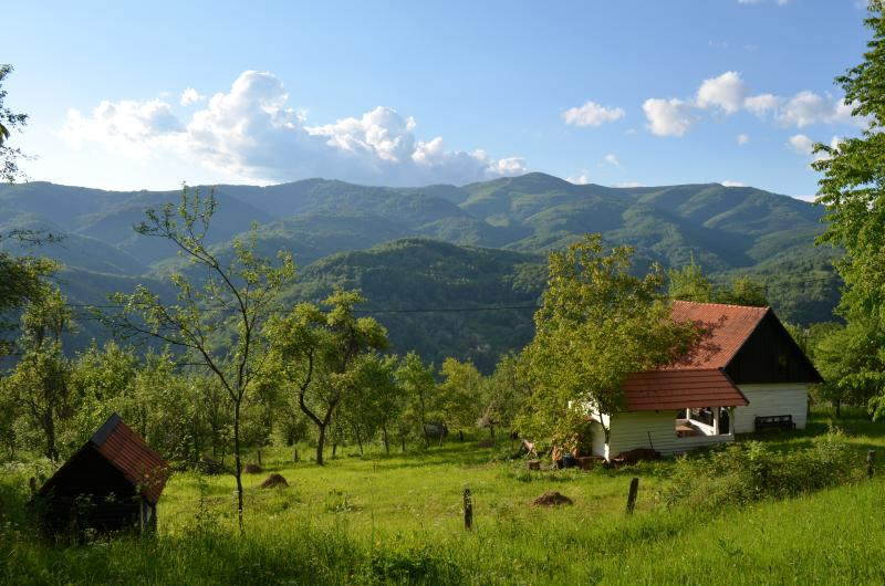 Carpathian Cottage - with Sauna, holiday rental in Rosia Montana