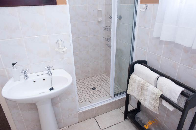 Big 5 bedroom shower.