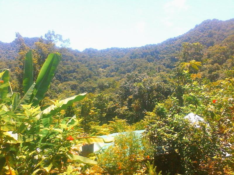 Dreamland Healing Sanctuary, holiday rental in Marigot