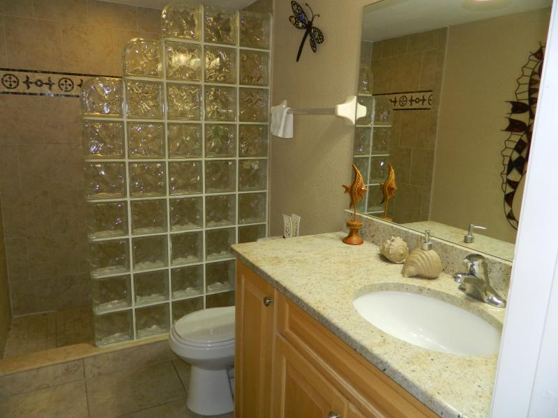 Master bath with glass block walk-in shower.