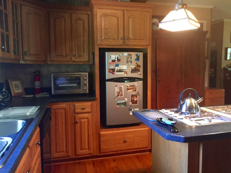 View of kitchen convection oven, cooktop, fridge