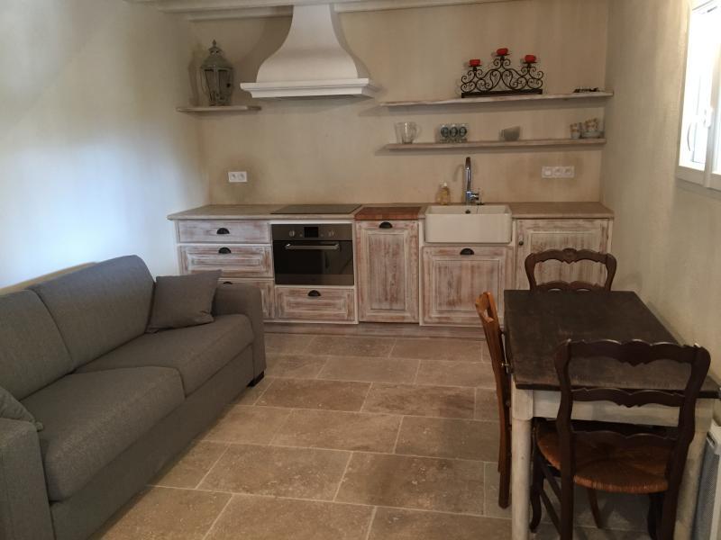 LE VIEUX FIGUIER: LE CABANON, holiday rental in Vacqueyras