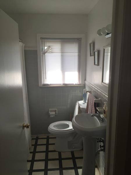 Bathroom- updated sink & toliet