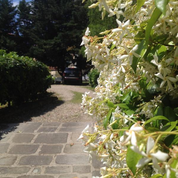Appartamento Firenze la piccola oasi con parcheggio, holiday rental in Mantignano