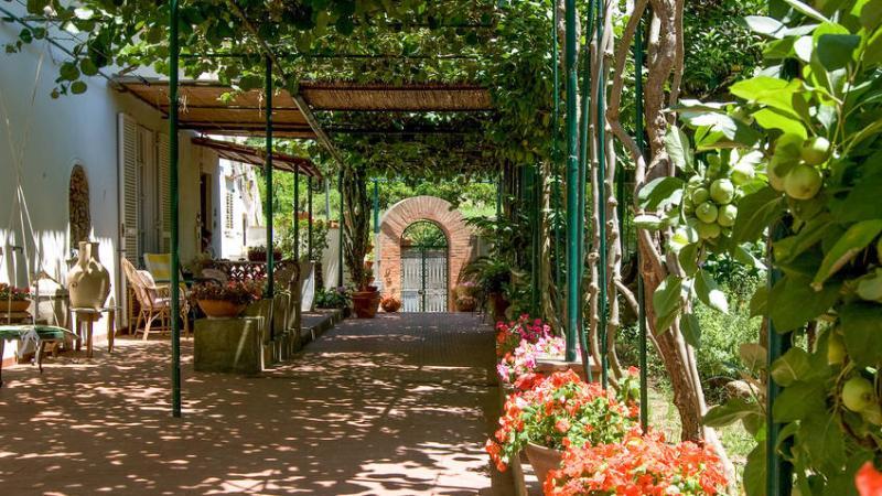 villa dei fiori B&B, casa vacanza a Capri