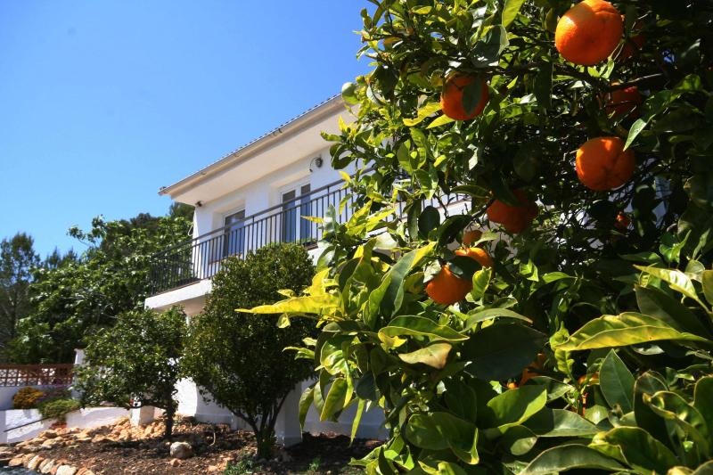 Spanish Country Villa with private pool and garden., vacation rental in Tarragona