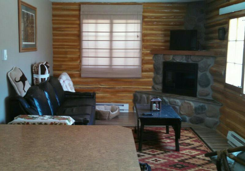 Lovells cabin - Fly Fishing, holiday rental in Crawford County