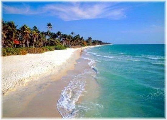 τοπικές παραλίες - πάρτε το δωρεάν λεωφορείο
