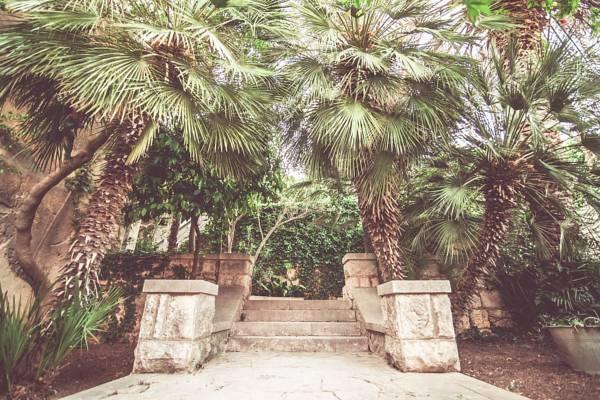 Amazing old style garden