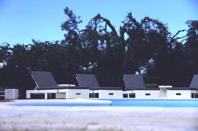 Aulivo bed and brekfast, holiday rental in Ripa-Pozzi-Querceta-Ponterosso