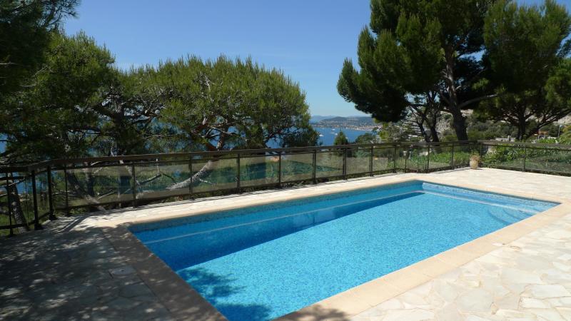 La piscine de 8m par 4m , en mosaique pour plus de douceur ...