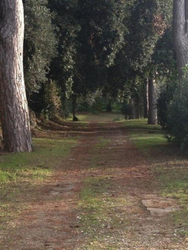 Private drive on Villa property
