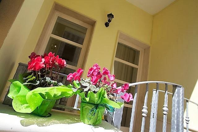 Two-roomed holiday home Orchid in Apulia in Salento Ugento a few kilometers from, holiday rental in Gemini