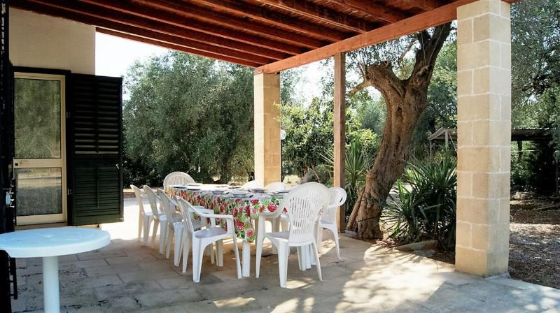 Country house for rent in Salento Apulia in Casarano immersed among olive trees, holiday rental in Collepasso
